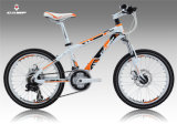 Stock (XC160)の熱いSales Children Bike/Alloy Bicycle