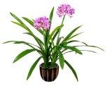 Plantas populares decorativo artificiales Narciso Flores Artificiales