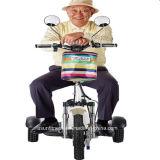 セリウムが付いている熱い販売3の車輪の電気スクーター
