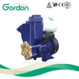 الكهربائية ذات الضغط العالي الذاتي فتيلة مضخة المياه مع كتلة المحطة الطرفية