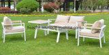 أثاث لازم خارجيّة مع كرسي تثبيت طاولة  حديقة أثاث لازم