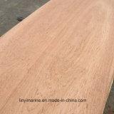 Contre-plaqué d'eucalyptus de la qualité 18mm avec prix de faisceau de peuplier le meilleur