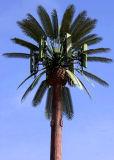 Einzelnes Gefäß verkleideter Palme-Telekommunikations-Aufsatz
