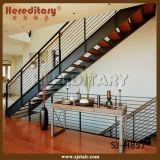 Rod intérieur clôturant l'escalier droit/escalier en verre (SJ-3014)