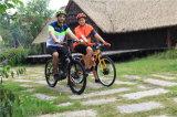 Bici elettrica elettrica di prezzi bassi della bici della sporcizia della bici elettrica pieghevole