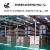 中国からのフィリピンへの安い各戸ごとEMS Federal Expressの明白な貨物配達パッケージのトラック運送サービス