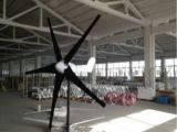 600W het Systeem van het het van-netHuis van de Turbogenerator van de wind met het Controlemechanisme van gelijkstroom