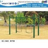 Campo de jogos do balanço do parque de diversões para o jogo dos miúdos (HC-13803)