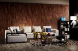 Sofà sezionale del nuovo di disegno 2016 fabbricato elegante moderno del salone (HC8128)