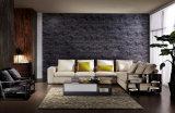 2016新しい現代優雅なデザイン居間ファブリック部門別のソファー(HC8101)