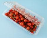 Blase, die freies Wegwerfhaustier-Plastiknahrungsmittelbehälter-Speicher mit Kappe verpackt