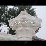 De witte Kolom van Carrara voor Bouwmateriaal mcol-145
