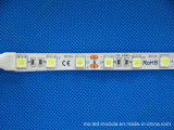 SMD 5050 DC12V IP68 Franja flexible del LED