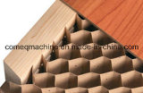 Base de panal de papel que hace la máquina para el uso de la puerta