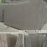 Granito G664 per i prodotti delle mattonelle delle lastre dei paracarri dei controsoffitti di punti