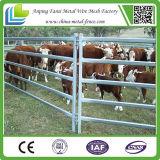 使用された牛または家畜の家畜飼育場の塀のパネル(5つの柵、6つの柵、7つの柵)