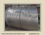 Bande laminée à chaud étroite de l'acier inoxydable 201