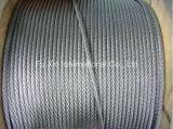 Fil Galv d'acier du carbone. Câble métallique