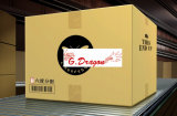 ボール紙のパッキング郵送の移動荷箱の波形のカートン(CT1004)