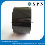 Magnete di ceramica permanente del ferrito per il magnete di industria