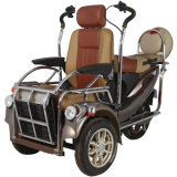 電気移動性のスクーター及びEスクーターの情報処理機能をもったコントローラの障害があるスクーター