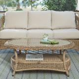 コーヒーテーブルとセットされるFurnir健康なWf-17067の柳細工のソファー