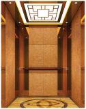 주거 가정 전송자 엘리베이터 공급자