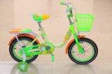 Bicicleta dos miúdos com mais baixo feixe para o bebê