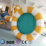 Syndicat de prix ferme circulaire gonflable de modèle de l'eau de cocos pour le sport aquatique LG8089