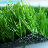 Professional Outdoor Soccer Spelen Fake gras