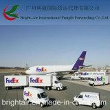 UPS 페더럴 익스프레스 DHL 중국에서 아프리카에 급행 표준 특사 출하 운임 운송업자