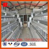 Клетка цыпленка слоя птицефермы в Китае