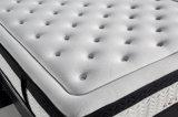 SaleのためのEuro 2016最新のTopの高密度Foam Mattress