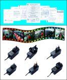 Anschluss-Stecker-Typ 12W Stromversorgung