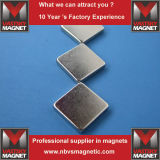De vierkante en Rechthoekige Magneten van de Zeldzame aarde van het Neodymium van Blokken