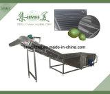 産業泡果物と野菜のクリーニングの洗浄の食糧機械