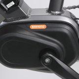 Elektrische Fiets van de Motor Bangfang van Ebike van de stad 250W Brushless MEDIO