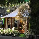 Migliore tenda Choice di campeggio della gente 5+ della grande tenda di lusso di safari