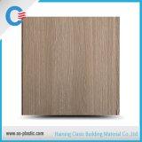 Belüftung-Panel für Decken-und Wand-Dekoration
