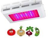 un quadrato di 2017 90W-600W LED coltiva gli indicatori luminosi; Rapporto chiaro: 8:1, 7:2, 7:1: 1 con la miscela degli indicatori luminosi rossi, blu, arancioni, gialli e bianchi
