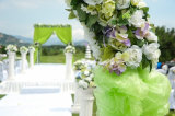 Standardgrößen-Stuhl-Deckel-/Hochzeits-Stuhl-Organza-Schärpe