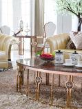 싼 타원형 대리석 황금 커피용 탁자