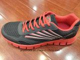 De nieuwe Schoenen van /Fashion van de Schoenen van de Sporten van de Vrouwen van de Mannen van de Stijl