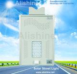 Luz solar al aire libre integrada del jardín de la calle del sensor de radar de microonda LED