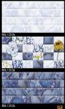 Wand-Fliesen - Keramikziegel - glasig-glänzende Fliese - Tintenstrahl-Wand-Fliese 300X600mm