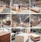 고품질 중국에서 윤이 난 넘치는 나무로 되는 베니어 문 제조자