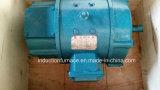 Grande Motor 0.4-200kw Pequeno Motor elétrico DC para venda