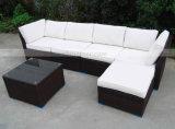Mtc266熱い販売の屋外の家具のソファーセット