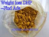 Grado farmacéutico 2, 4-Dinitrophenol/DNP para la pérdida de peso