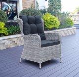 Rota de aluminio del jardín del patio del ocio de la oficina del hotel moderno al aire libre del hogar que cena la silla (J5881)